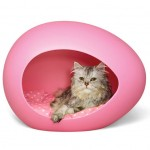 pink cathouse