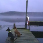 The mist over the sea